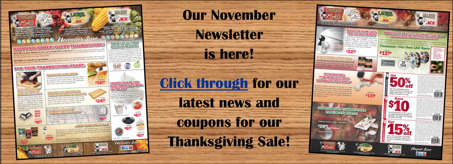 Our November newsletter is online