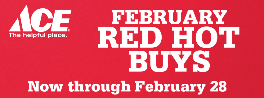 Ace February Red Hot Buys