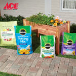 MiracleGro Spring Gardening