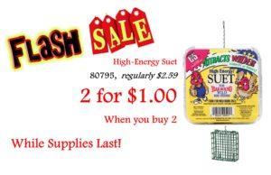Flash Sale Suet