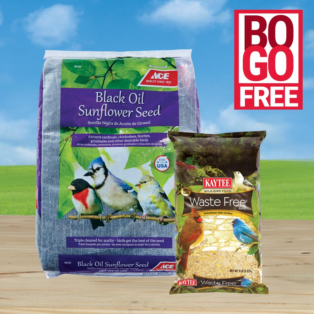 April 2018 Bird Seed BOGO