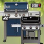 Weber Indigo Grill 2